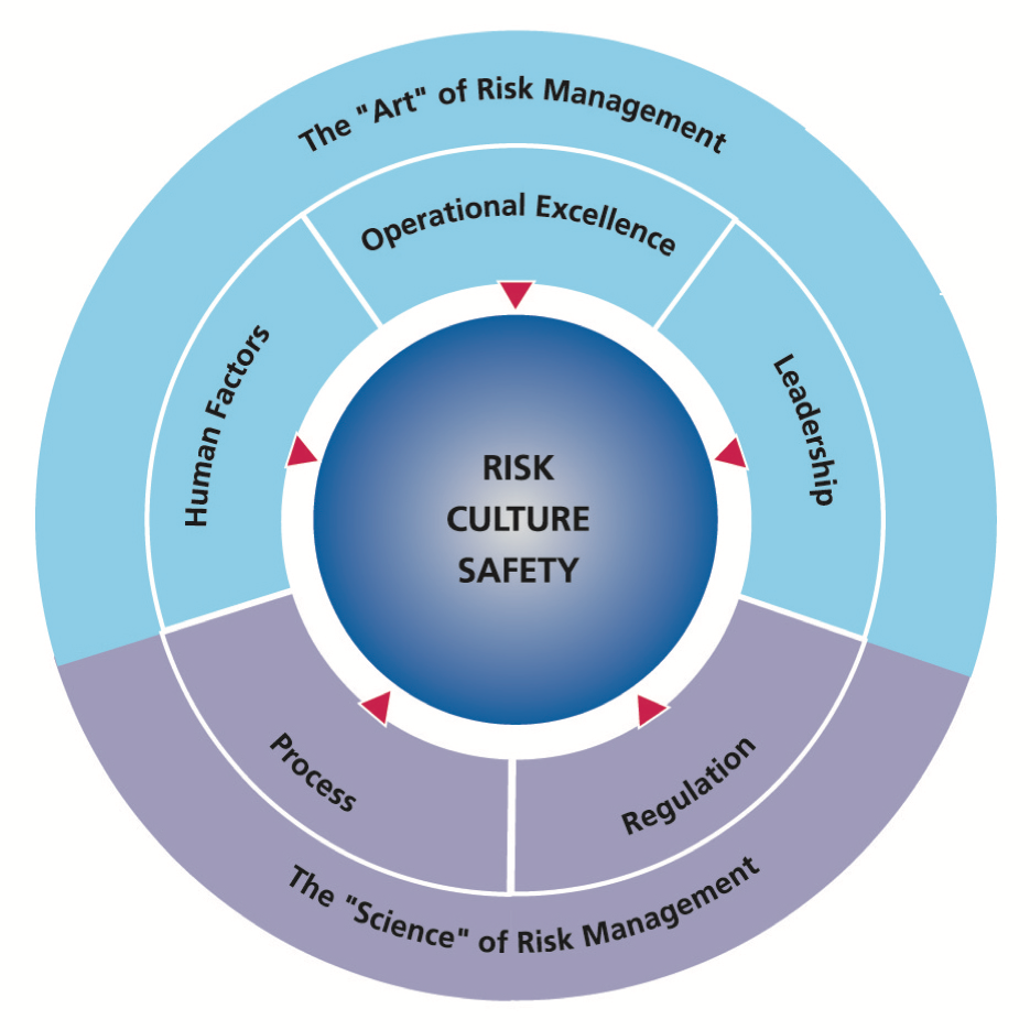 Risk management diagram for the High Reliability Programme