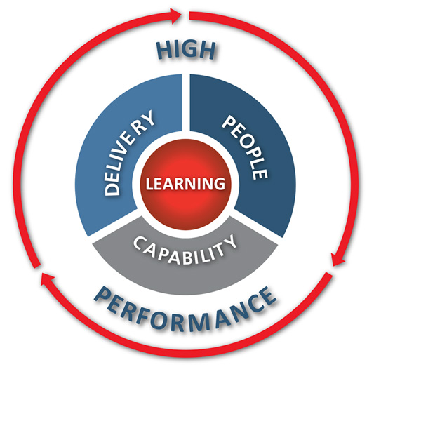 High performance team diagram for the HPT Programme